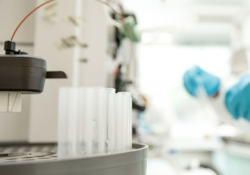 Protein Purification Services